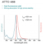 Preview: ATTO488-Actin for TIRFM (alpha-Actin, skeletal muscle rabbit) - 5x100µg